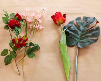 Растения для декорирования