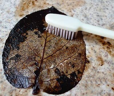 Зубной щеткой
