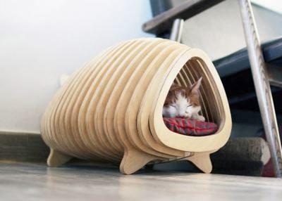 Димик для кота